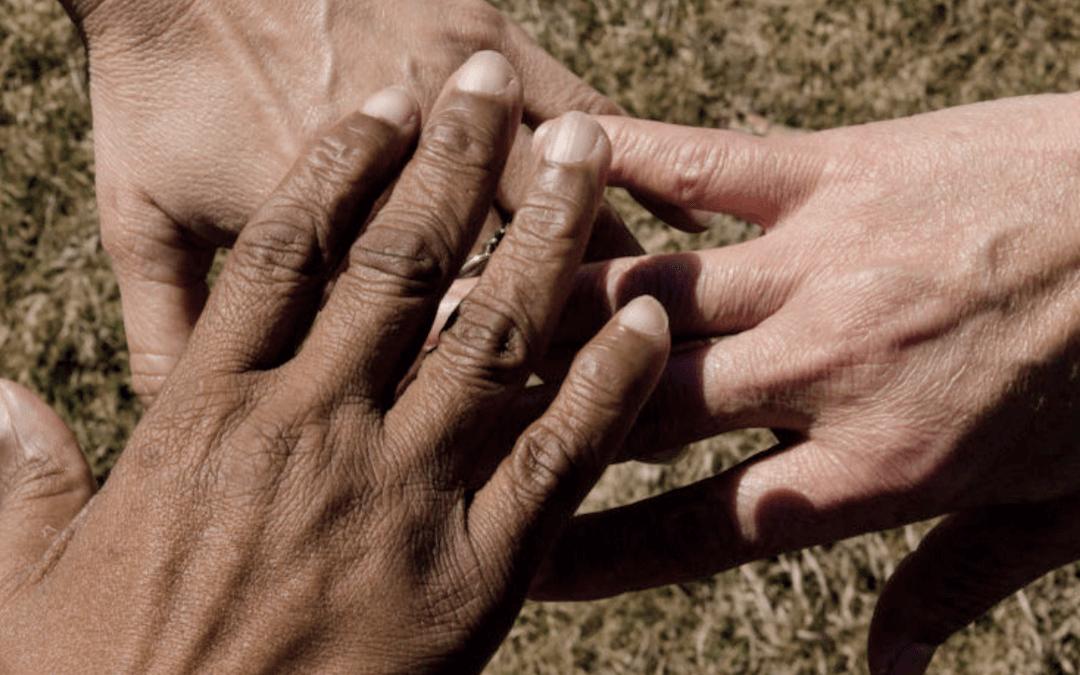 Série 'Lendo e Refletindo' do OLMA traz artigo sobre o Ano Inaciano